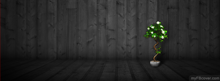 abstract fb cover - photo #3
