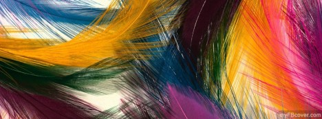 Colourful Feathers Facebook Cover