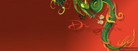 Dragon Facebook Cover