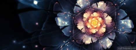 Flower Abstract Facebook Cover