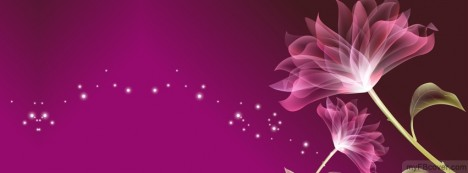 Pink Flower Facebook Cover