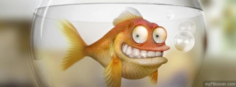Funny Goldfish Facebook Cover