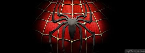 Spiderman Facebook Cover