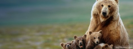 Grizzly Mom Facebook Cover