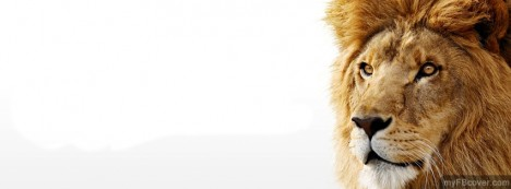 Mac OS Lion Facebook Cover