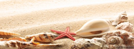 Shell Facebook Cover