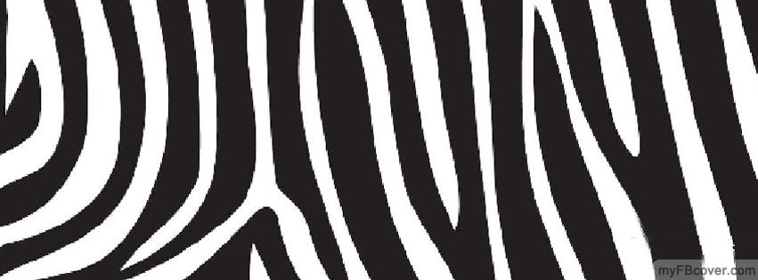 Zebra skin - photo#18