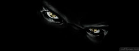 Beast Eyes Facebook Cover