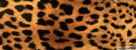 Leopard Skin Facebook Cover