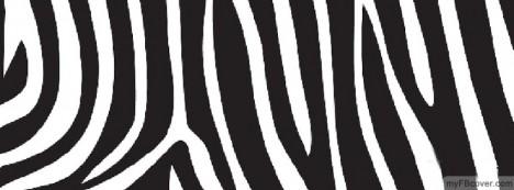 Zebra Skin Facebook Cover