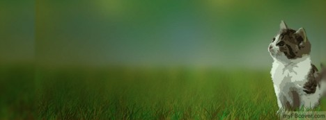 Cat On Grass Facebook Cover