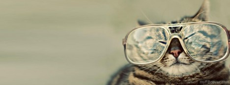 Cat With Goggles Facebook Cover